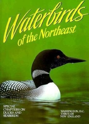 Waterbirds of the Northeast: Washington, D.C. Through New England als Taschenbuch