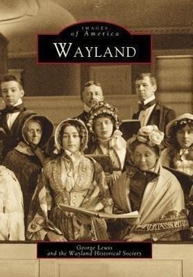 Wayland als Taschenbuch