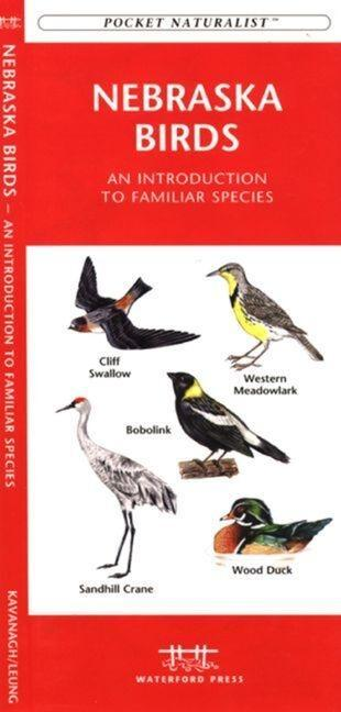 West Virginia Birds: An Introduction to Familiar Species als Taschenbuch