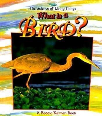 What Is a Bird? als Taschenbuch