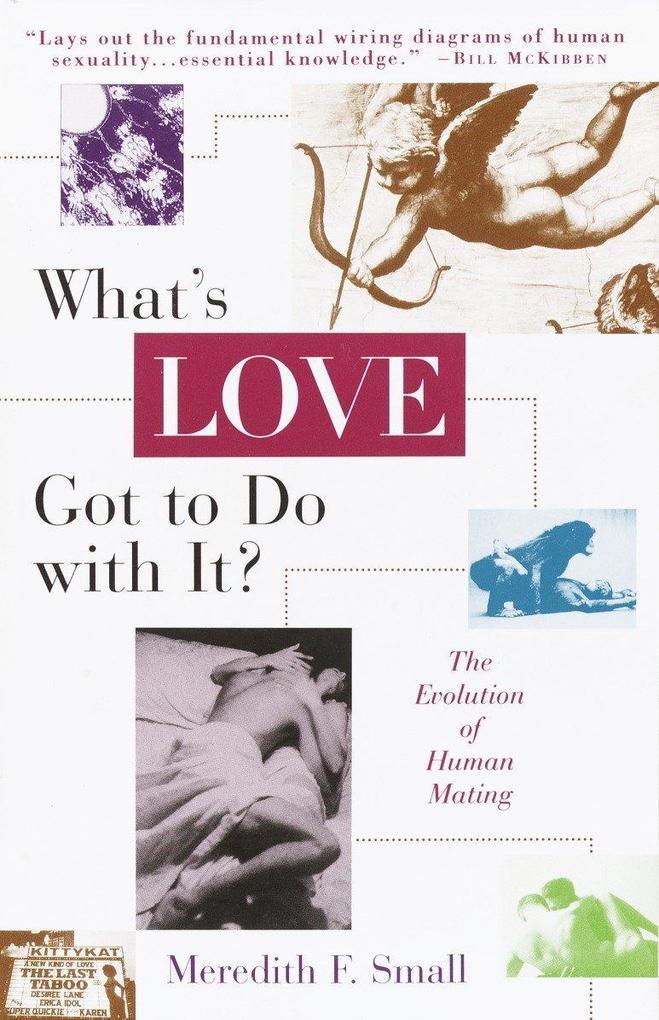 What's Love Got to Do with It? als Taschenbuch