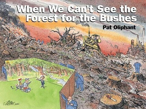 When We Can't See the Forest for the Bushes als Taschenbuch