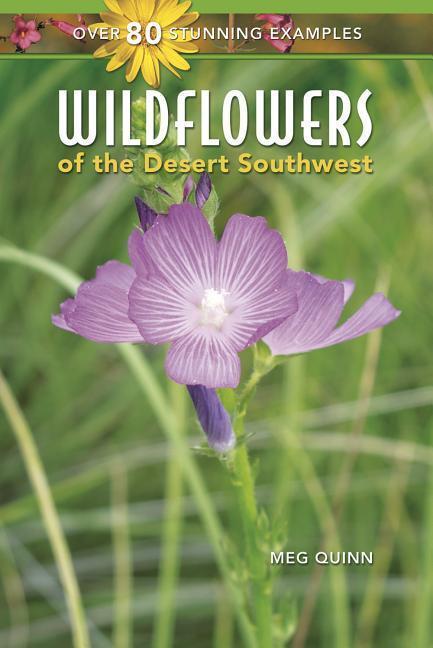WILDFLOWERS OF THE DESERT SOUT als Taschenbuch