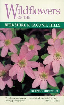 Wildflowers of the Berkshire & Taconic Hills als Taschenbuch