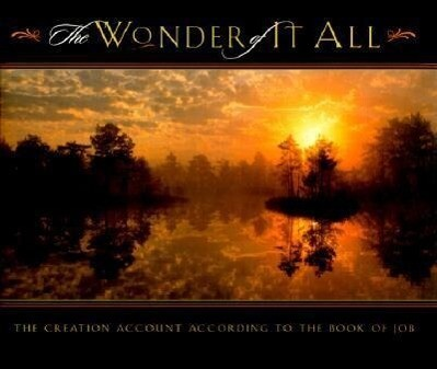 The Wonder of It All als Buch