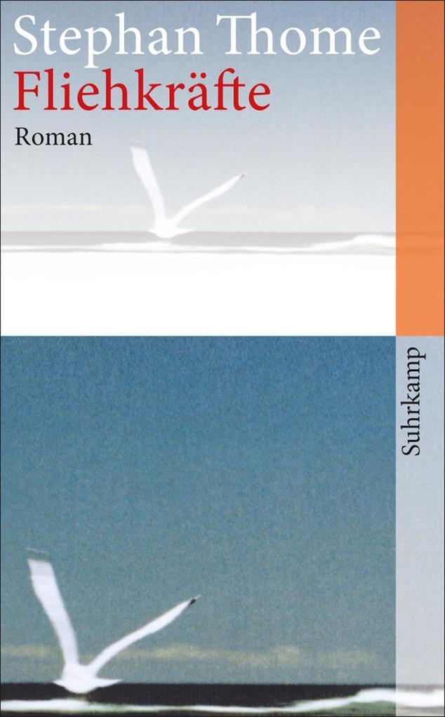Fliehkräfte als eBook