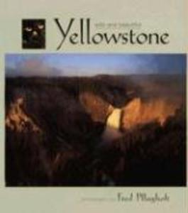 Yellowstone Wild and Beautiful als Buch