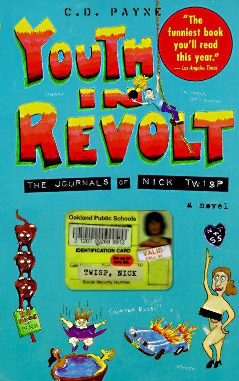 Youth in Revolt als Taschenbuch