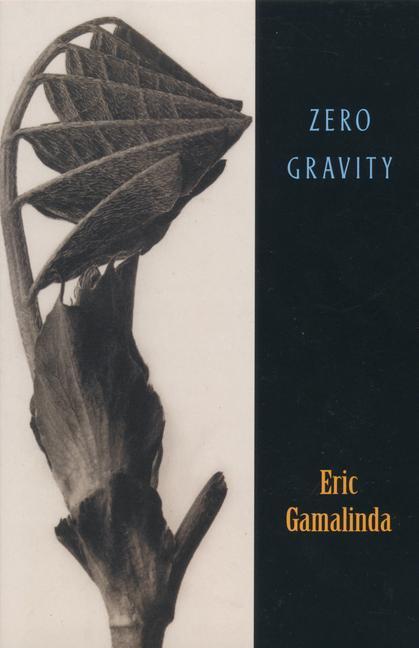 Zero Gravity als Taschenbuch