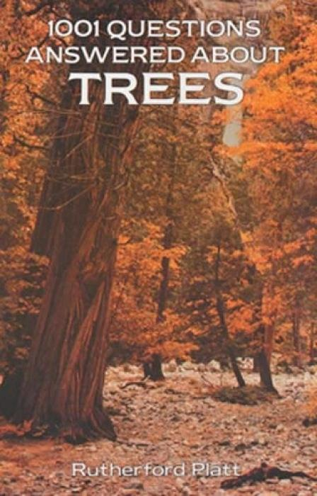 1001 Questions Answered About Trees als Taschenbuch