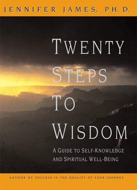 Twenty Steps to Wisdom: Exploring, Learning, Making Friends, and Pretending als Buch