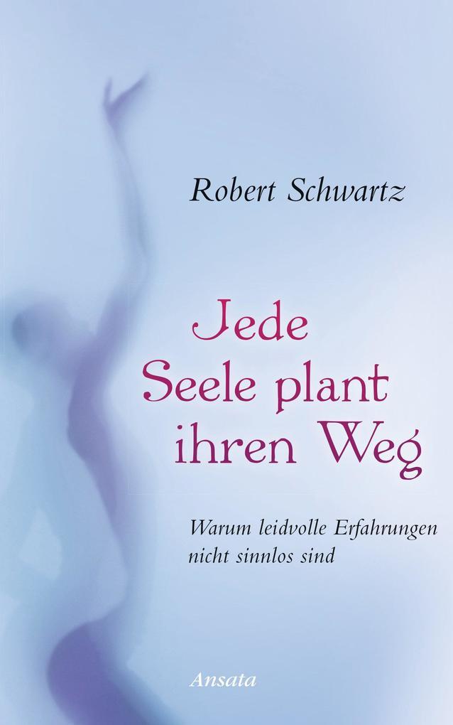 Jede Seele plant ihren Weg als eBook von Robert Schwartz