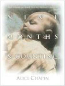 Nine Months & Counting: Bible Promises/Bright Ideas F/Pregnancy and After als Taschenbuch