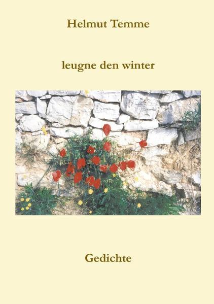 Leugne den Winter als Buch