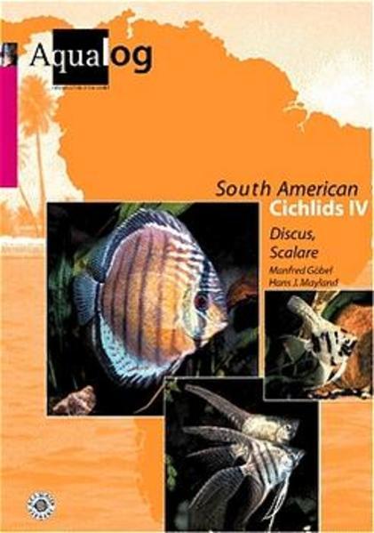 Southamerican Cichlids 4 als Buch