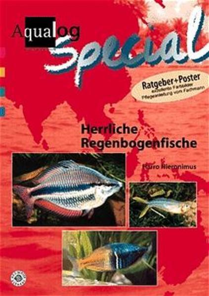 Herrliche Regenbogenfische als Buch