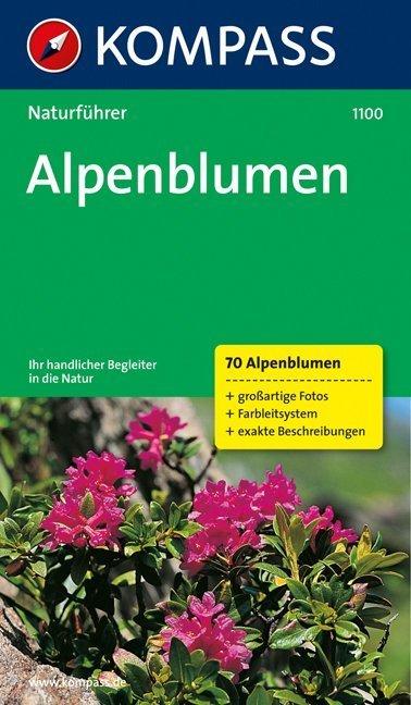 Naturführer Alpenblumen als Buch