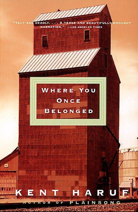 Where You Once Belonged als Taschenbuch