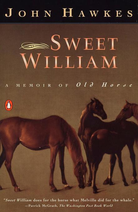Sweet William: A Memoir of Old Horse als Taschenbuch