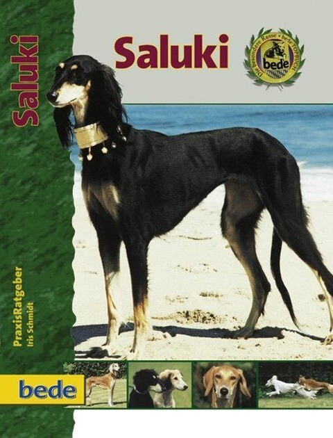 PraxisRatgeber Saluki als Buch