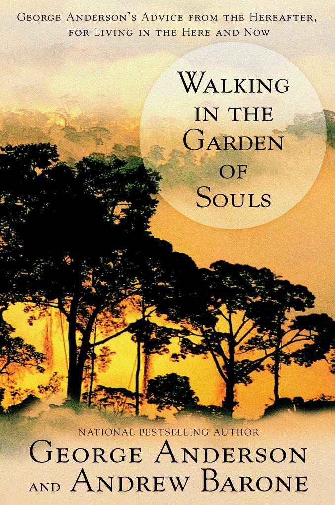 Walking in the Garden of Souls als Taschenbuch
