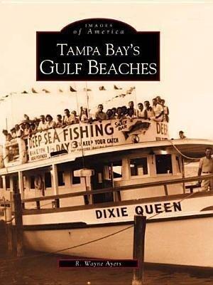 Tampa Bay's Gulf Beaches als Taschenbuch