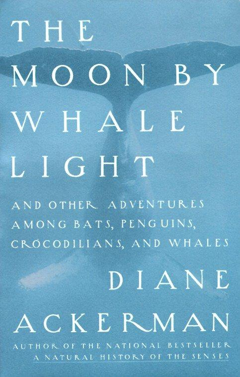Moon by Whale Light: And Other Adventures Among Bats, Penguins, Crocodilians, and Whales als Taschenbuch
