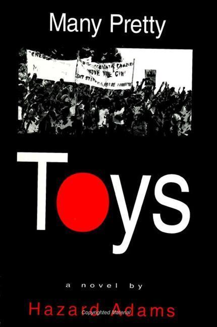 Many Pretty Toys als Buch