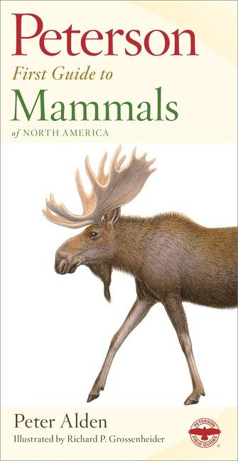 Peterson First Guide to Mammals of North America als Taschenbuch