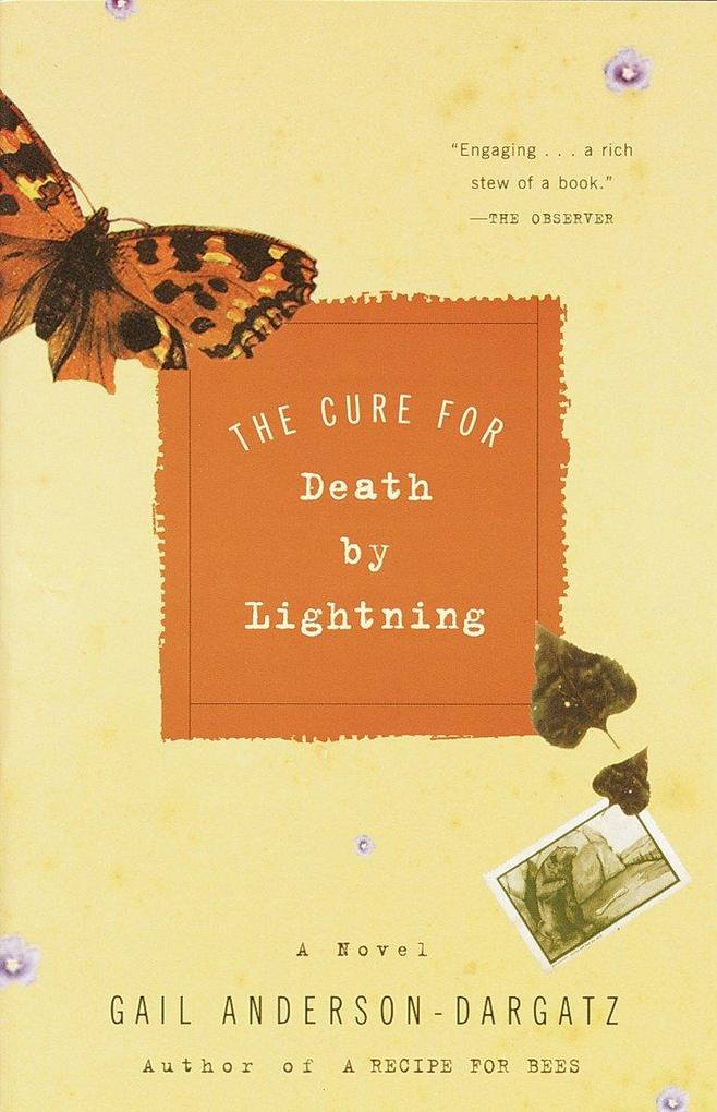 The Cure for Death by Lightning als Taschenbuch