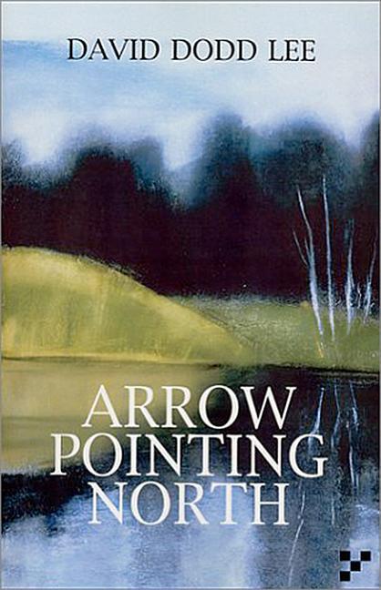 Arrow Pointing North als Taschenbuch
