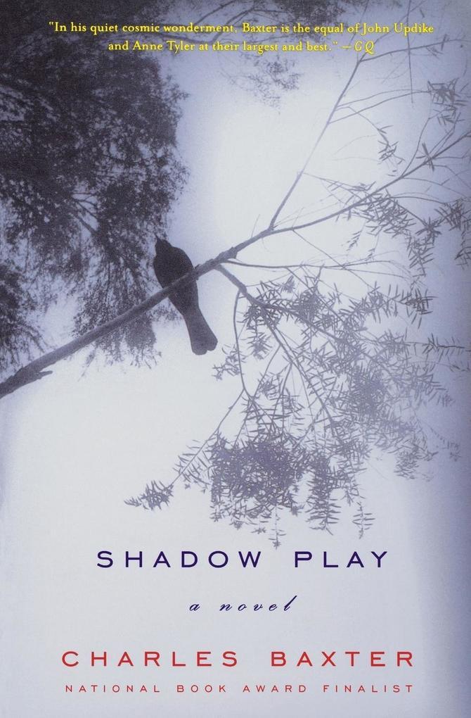 Shadow Play als Taschenbuch