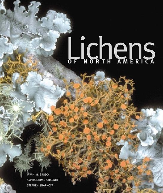 Lichens of North America als Buch