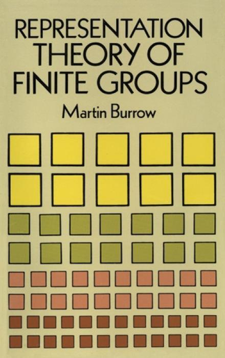 Representation Theory of Finite Groups als Taschenbuch