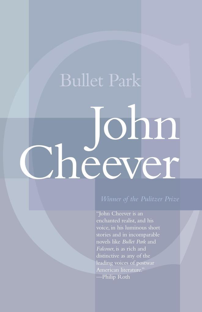 Bullet Park als Taschenbuch