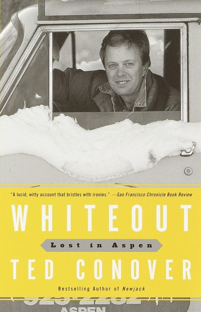 Whiteout: Lost in Aspen als Taschenbuch