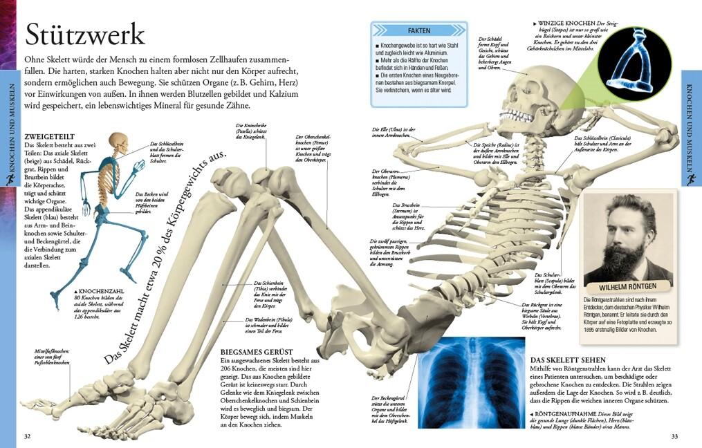 Der menschliche Körper für clevere Kids (Buch)
