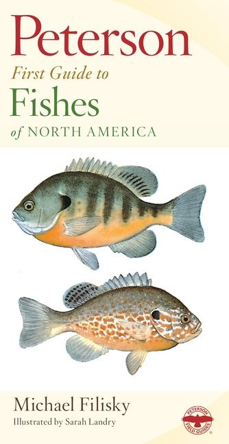 Peterson First Guide to Fishes of North America als Taschenbuch