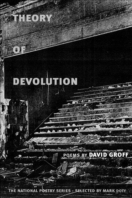 Theory of Devolution als Buch