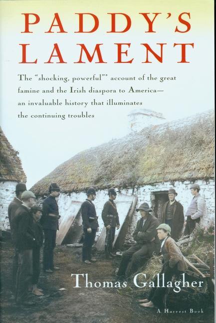 Paddy's Lament, Ireland 1846-1847: Prelude to Hatred als Taschenbuch