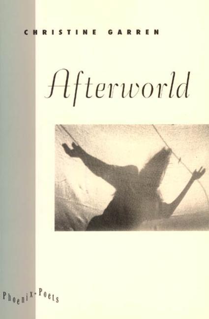 Afterworld als Taschenbuch