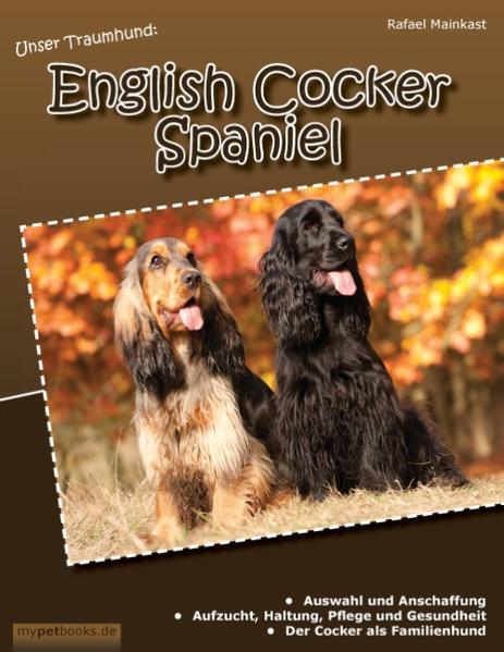 Unser Traumhund: English Cocker Spaniel