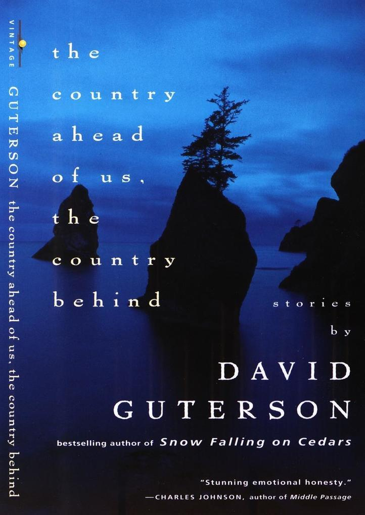 The Country Ahead of Us, the Country Behind als Taschenbuch