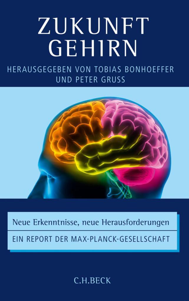 Zukunft Gehirn als eBook