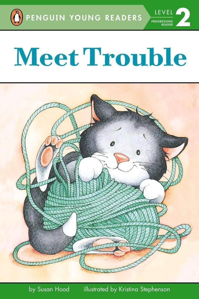 Meet Trouble als Taschenbuch