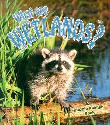 What Are Wetlands? als Taschenbuch