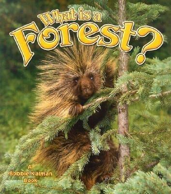 What Is a Forest? als Taschenbuch