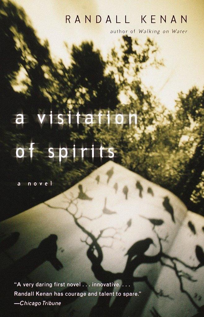 A Visitation of Spirits als Taschenbuch