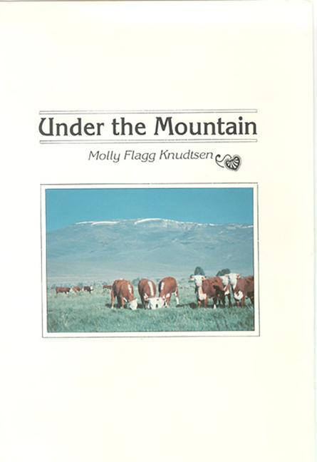 Under the Mountain als Buch