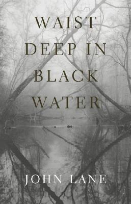 Waist Deep in Black Water als Buch